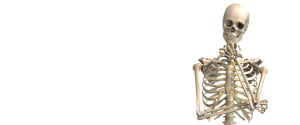 thinking about skeletal health